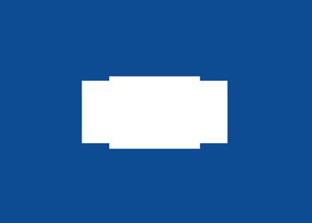 DG4-MOBL-C06 Monochrome Display Overlay