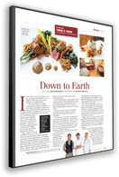 (201) Magazine 10 x 13 Page Reprint Souvenir Plaque