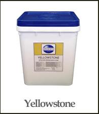 yellowstone-195x225.jpg