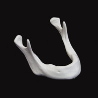 Edentulous Mandible - Each