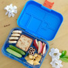 unchbox Maxi6 Lunchbox with biscuits