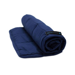Neptune Weighted Lap Pad 2kg