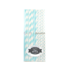 Make Nice Mix & Match Paper Straws - Aqua (Pastel Blue)