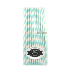 Make Nice Striped Paper Straws - Aqua (Pastel Blue)