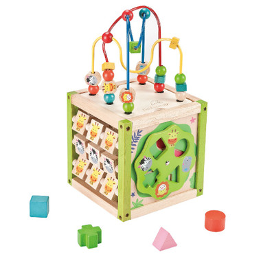 EverEarth My First 5 in 1 Wooden Activity Cube