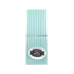 Make Nice 25 Chevron Paper Straws - Aqua (Pastel Blue)