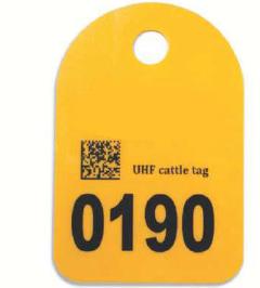 animal identification tag