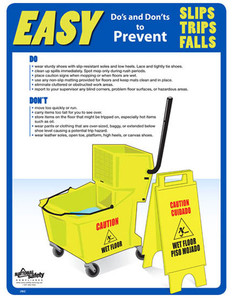 Slips, Trips & Falls Poster (24 by 32 inch)