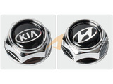 Hyundai and Kia License Plate Bolt Set