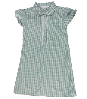 Ex M-S Girls Green Gingham School Dress  - £2.50