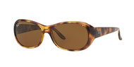 Ray-Ban RB4061 Oval Sunglasses