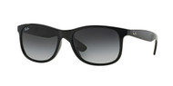 Ray-Ban RB4202 Rectangle Sunglasses