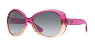 Ray-Ban RJ9048S Butterfly Sunglasses