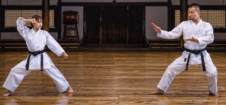 Image result for japanese karate