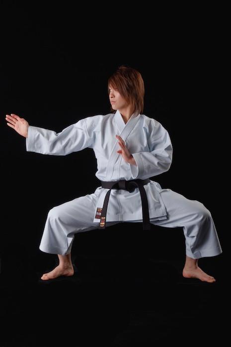 TOKAIDO WKF YAKUDO 躍動 (TSAE) Heavyweight Kata Uniform