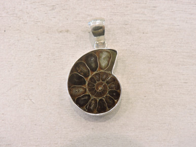Charles Albert Shell Pendant