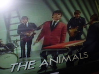 The fantastic Animals