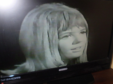 The very best of 1960s marianne faithfull dvd the garden room image 1 altavistaventures Image collections