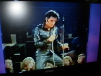 Elvis Presley singing Jailhouse Rock