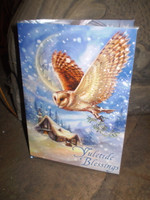 Traditional English Christmas,Yuletide Mistletoe Owl New Age card,Eco Friendly