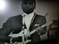 The Very Best of 1960's Muddy Waters DVD, The Blues