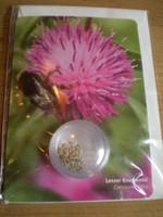 Wildflower Seeds Gardeners Greeting Card,Lesser Knapweed,centaurea nigra,
