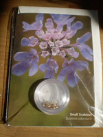 Wildflower Seeds Gardeners Greetings Card,Small Scabious,Scabiosa columbaria