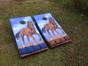 Standard Series Cornhole Boards with installed Horse graphics