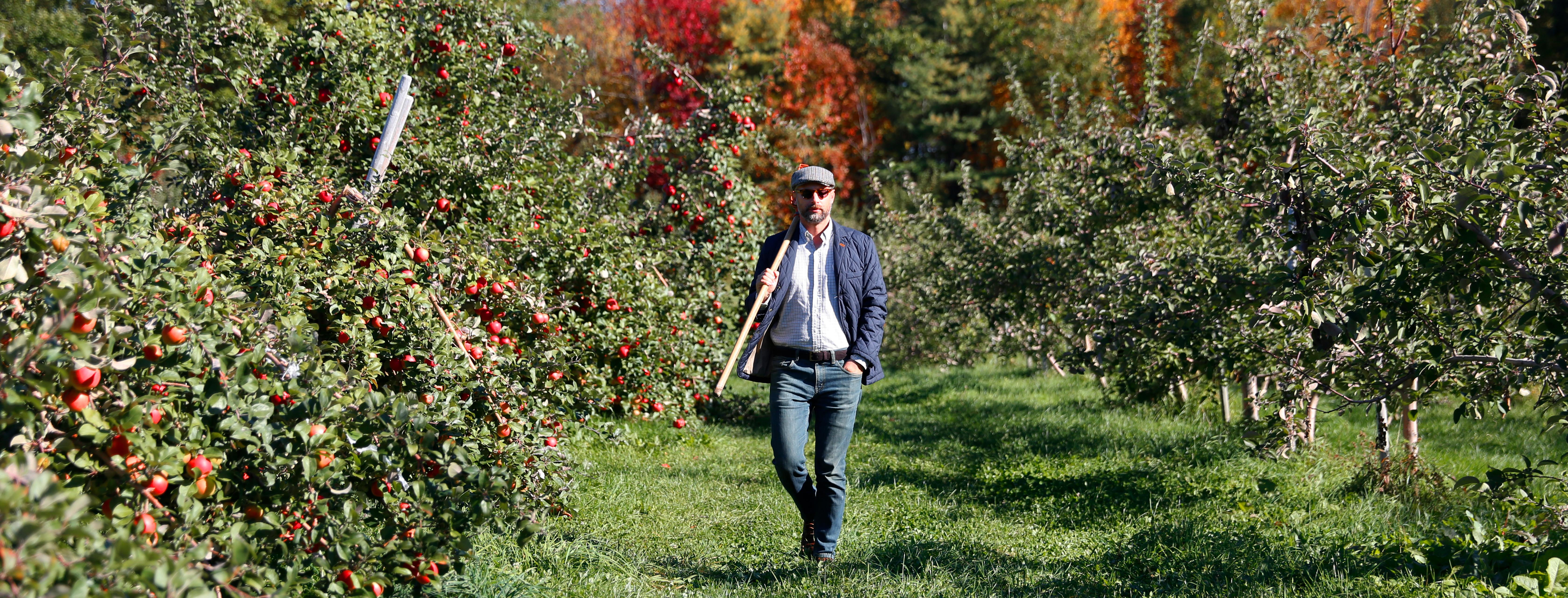 jared-apple-orchard-6720-b.jpg