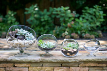 Bias Bowls - Set of 3