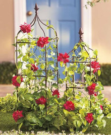 Set of 2 French Wrought Iron Garden Trellises
