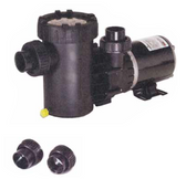 SPECK MODEL | SINGLE SPEED PUMPS - 3 FT. NEMA CORD - NO SWITCH | 2071113435