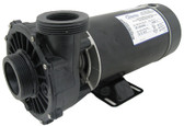 WATERWAY | COMPLETE PUMPS | 6410830-10