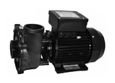 WATERWAY | COMPLETE 230V 2-SPEED EXECUTIVE EUROPUMP 2 1/2 HP 50 HZ | 3R21050-0D
