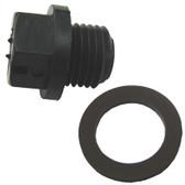 HAYWARD | PLUG, DRAIN W/ GASKET | SPX1700FGV