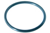 PENTAIR | O-RING ADAPTOR, 2 REQ. | 6020018