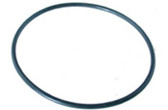 "PENTAIR | O-RING FOR 6"" TRAP (5 7/8 DIA) 