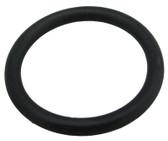 PENTAIR | O-RING DRAIN PORT W/4695-02 | 175680