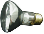 PENTAIR/AMERICAN PRODUCTS | BULB, FLOODLAMP 100W-12V (SPABRIGHT) | 79108100