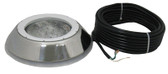 PENTAIR | 100 WATT, 12 VOLT, STAINLESS STEEL FACE RING | 78873500