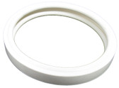 PENTAIR/AMERICAN PRODUCTS | SILICONE GASKET, WHITE | 79108600