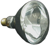 PENTAIR/AMERICAN PRODUCTS | BULB, FLOOD 300W 12V | 79101900