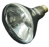 PENTAIR/AMERICAN PRODUCTS | BULB, FLOOD 100W 12V | 79101800