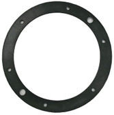 HYDREL/STA-RITE | GASKET, NICHE FACE RING | 9250-14