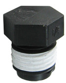 PENTAIR | PLUG, ¼"