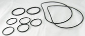 CARETAKER | O-RING KIT, INCLUDES: (2 LARGE O-RINGS, 2 UNION O-RINGS, 5 SMALL O-RINGS) | 5-13-1
