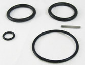 PENTAIR | O-RING REPLACEMENT KIT | 263054