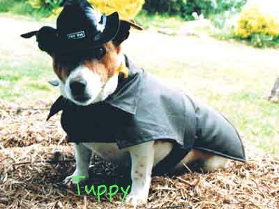 tuppy-brd.jpg