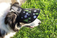 Border Collie takes either MEDIUM or LARGE (Large gives more shade and seems more comfortable for dog)
