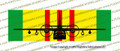 Vietnam Service Ribbon C-123 FRONT Bumper Sticker Printed Vinyl SRVC123
